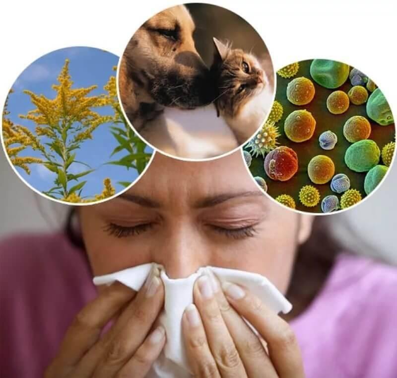 Алергічний свербіж шкіри лікування народними засобами