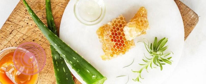 Алое від нежитю, кашлю, при застуді з медом: лікувальні рецепти