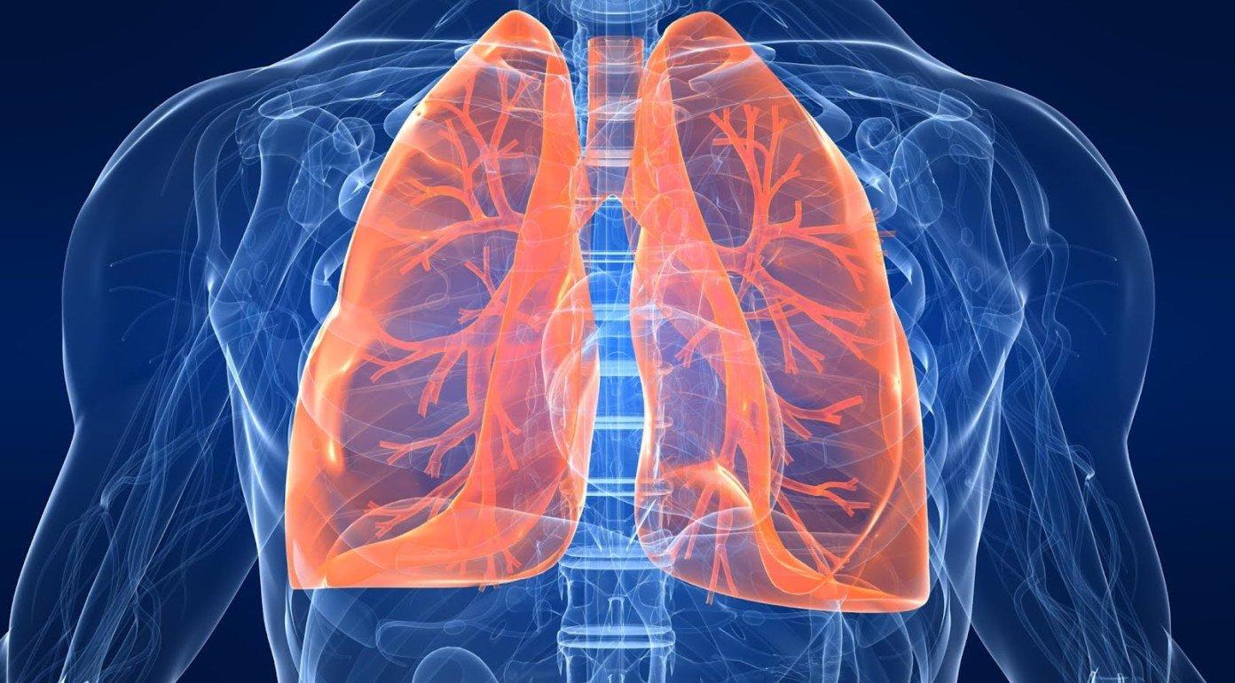 Двостороннє запалення легенів симптоми лікування і профілактика