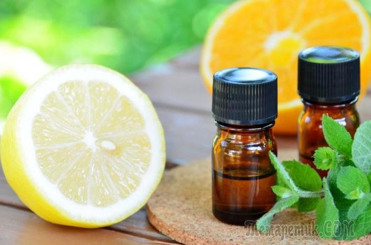 Ефірні масла при застуді і нежиті що вибрати і яким чином застосовувати
