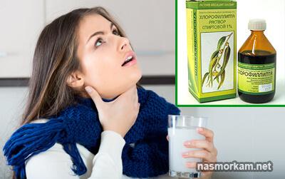 Хлорофіліпт для полоскання горла: основні нюанси застосування. Застосування масляного хлорофіліпт для лікування горла
