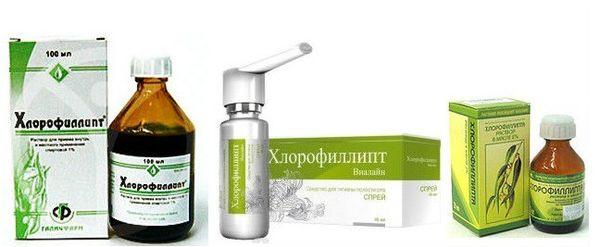Хлорофіліпт для полоскання горла: як розводити спиртовий розчин