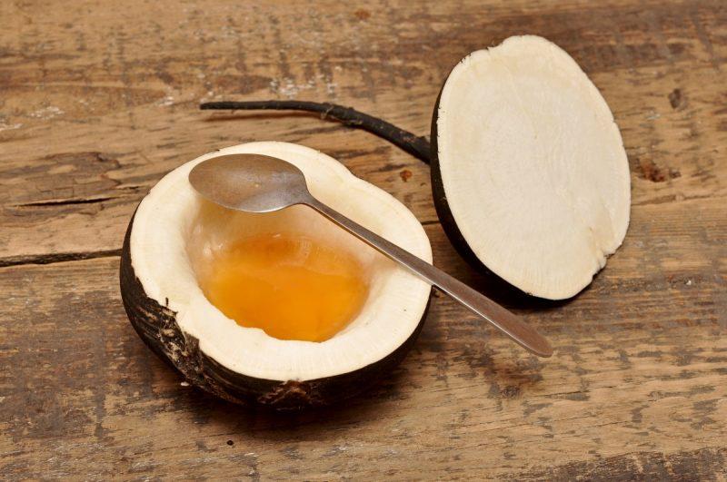 Каштановий мед корисні властивості і протипоказання