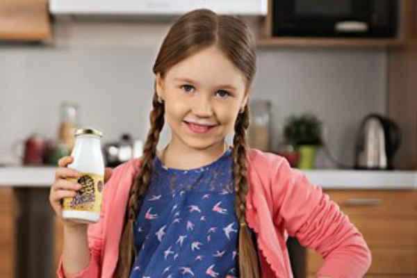 Кедрове молочко лікувальні властивості і протипоказання