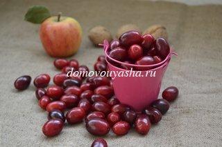 Кизил – корисні властивості і протипоказання ягід, винограду