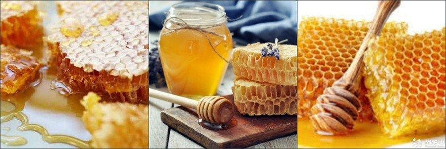 Класифікація видів меду і їх користь для організму