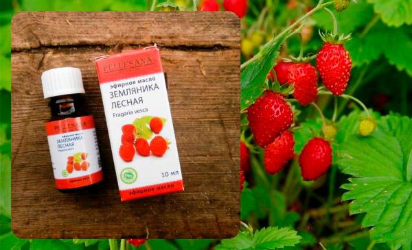 Корисні властивості ефірного масла лісової суниці у догляді за шкірою
