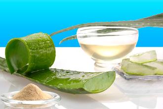 Лікування нежиті соком алое
