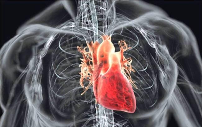 Лікування серцевої недостатності у літніх людей народними засобами
