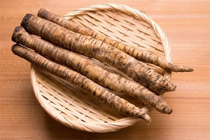 Лопух властивості і застосування кореня лопуха в народній медицині