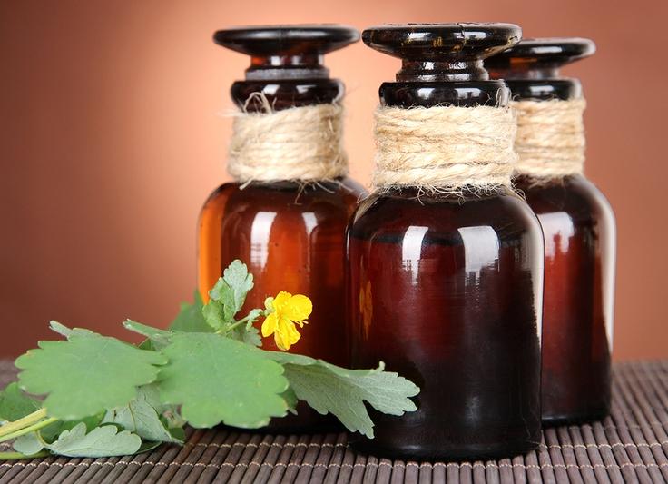 Настоянка чистотілу на горілці – рецепт і застосування