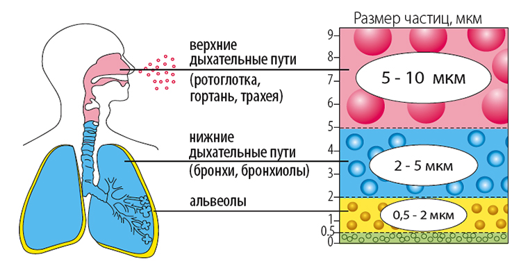 Інгаляції при ангіні препарати методика проведення