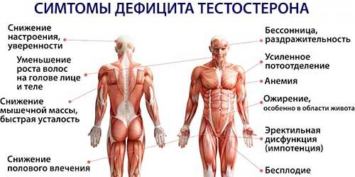 Прищі при підвищеному тестостерон у чоловіків