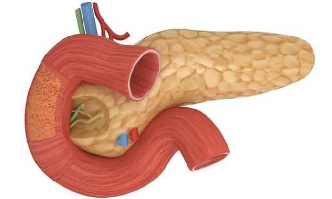 Розшифровка узд підшлункової залози: норма, відхилення